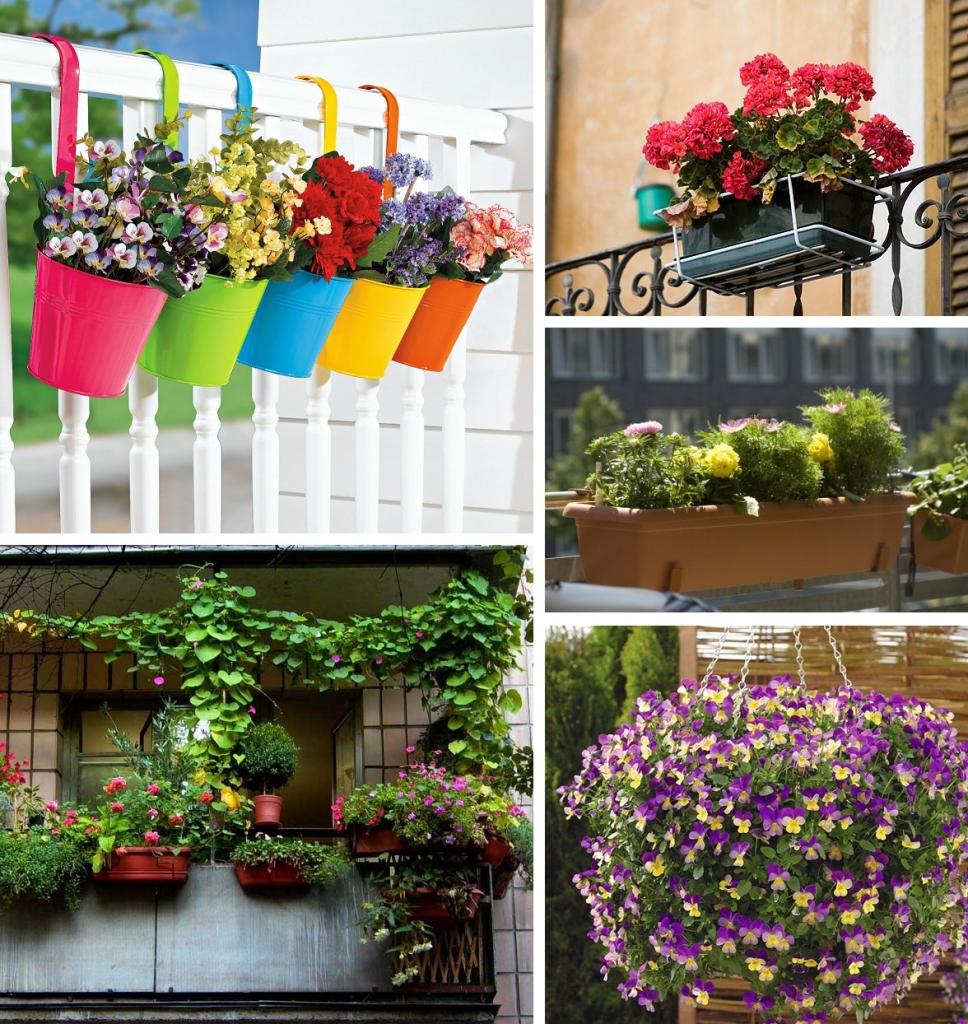 Во что садят цветы на балконе