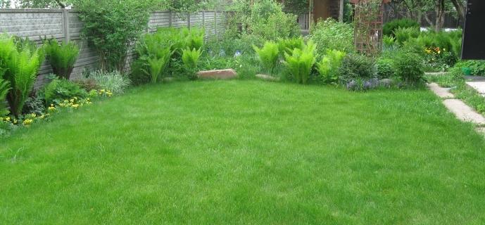 Удобрения для газона