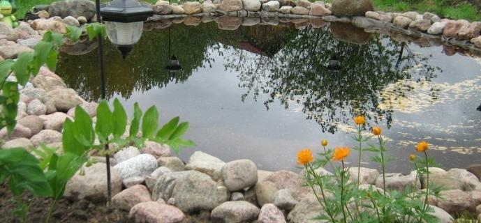 Декоративные водоемы на участке