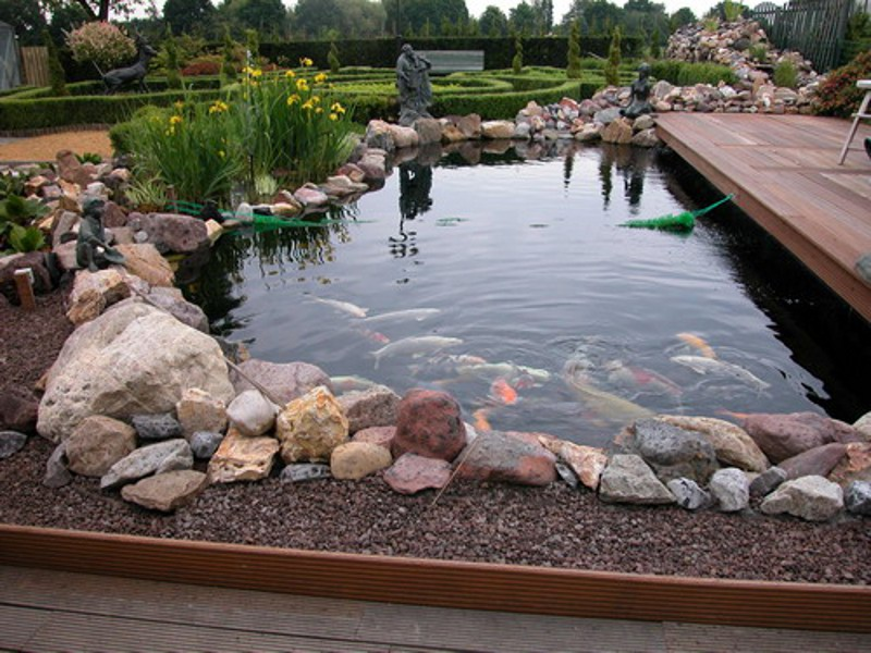 декорирование прудов и водоемов