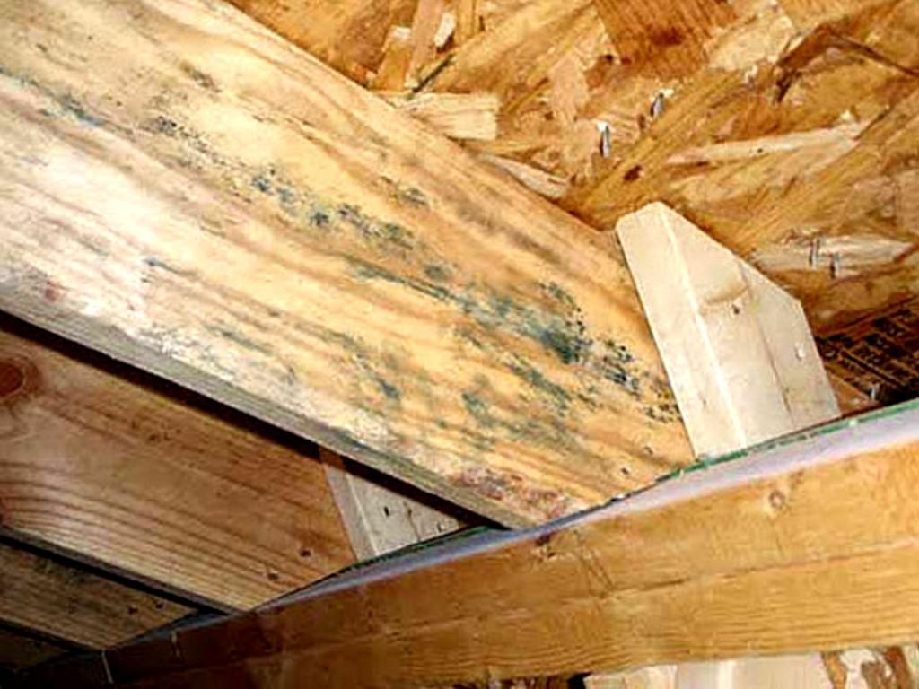 эффективная защита древесины от гниения
