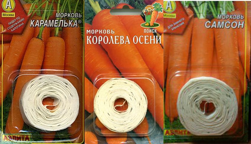 Как сажать морковь лентами 164
