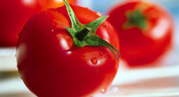Важность правильного выбора сортов помидоров