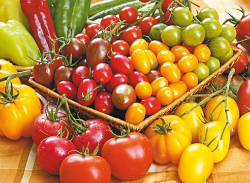 Стоит-ли-выращивать-одновременно-несколько-разных-сортов-томатов