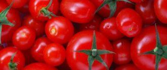сорты помидоров