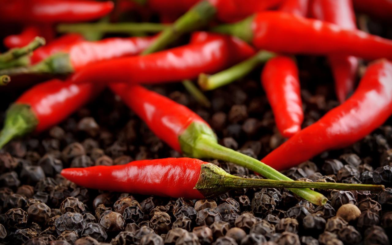 Условия для выращивания перца 769