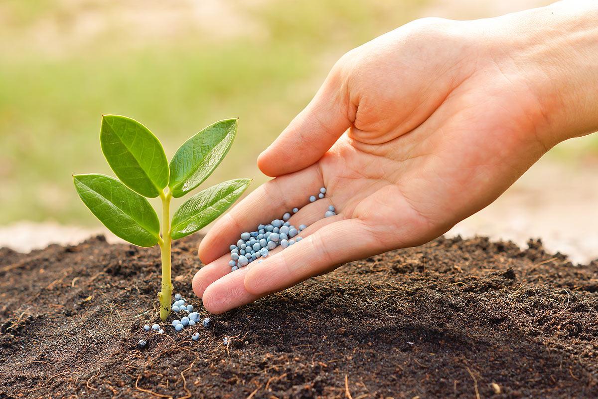 Удобрение земли и снижение уровня кислотности