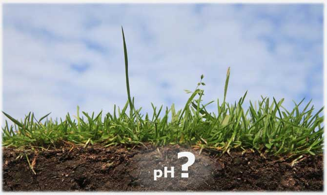 Влияние кислотности на почву